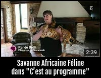 Nos Savannah sur France 2