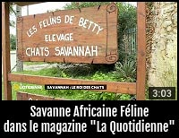 Nos Savannah sur France 5